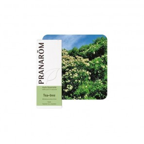 PRANAROM HE TEA TREE 10ML