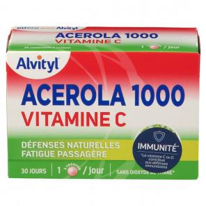 GOVITAL ACEROLA1000 CPR CROQ30